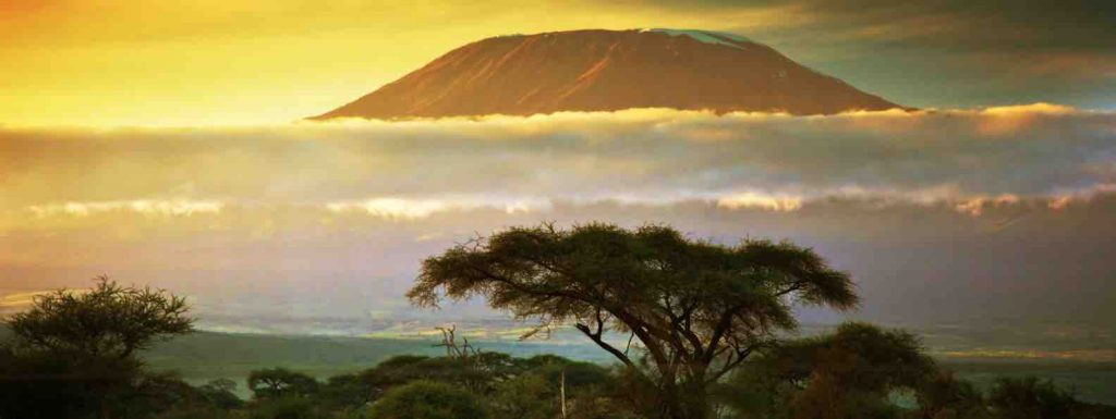 Mount Kilimanjaro view over the shape